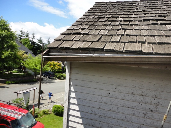 Gutters-Cleaning-Seattle-is-necessary