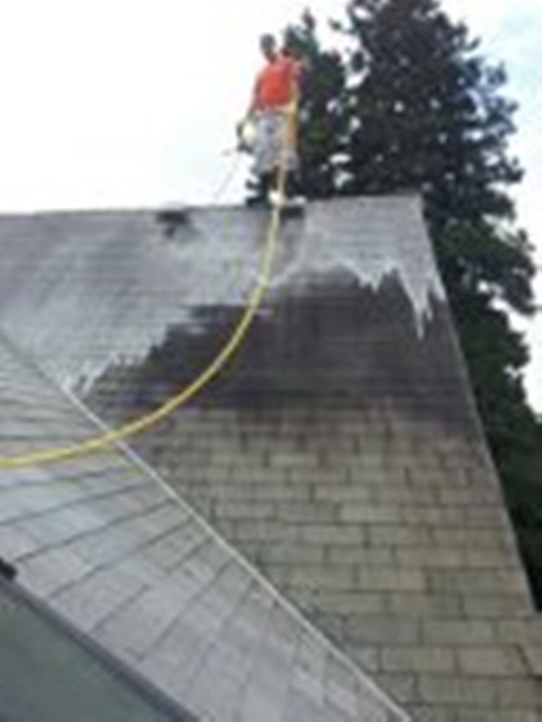 Soft Wash Roof Cleaning In Everett, Washington