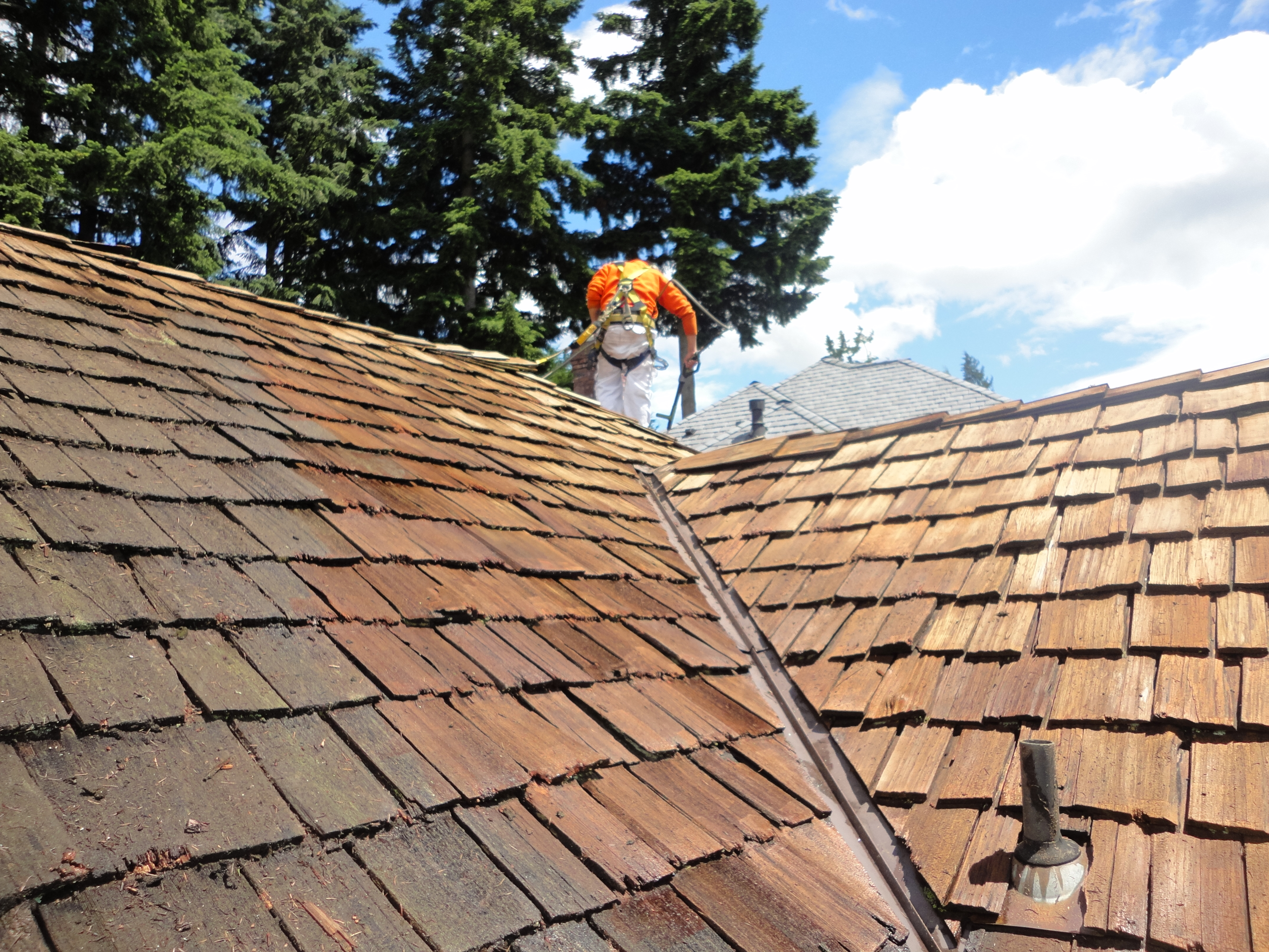 Pressure Washing Prices Bellevue Seattle Roof Cleaning