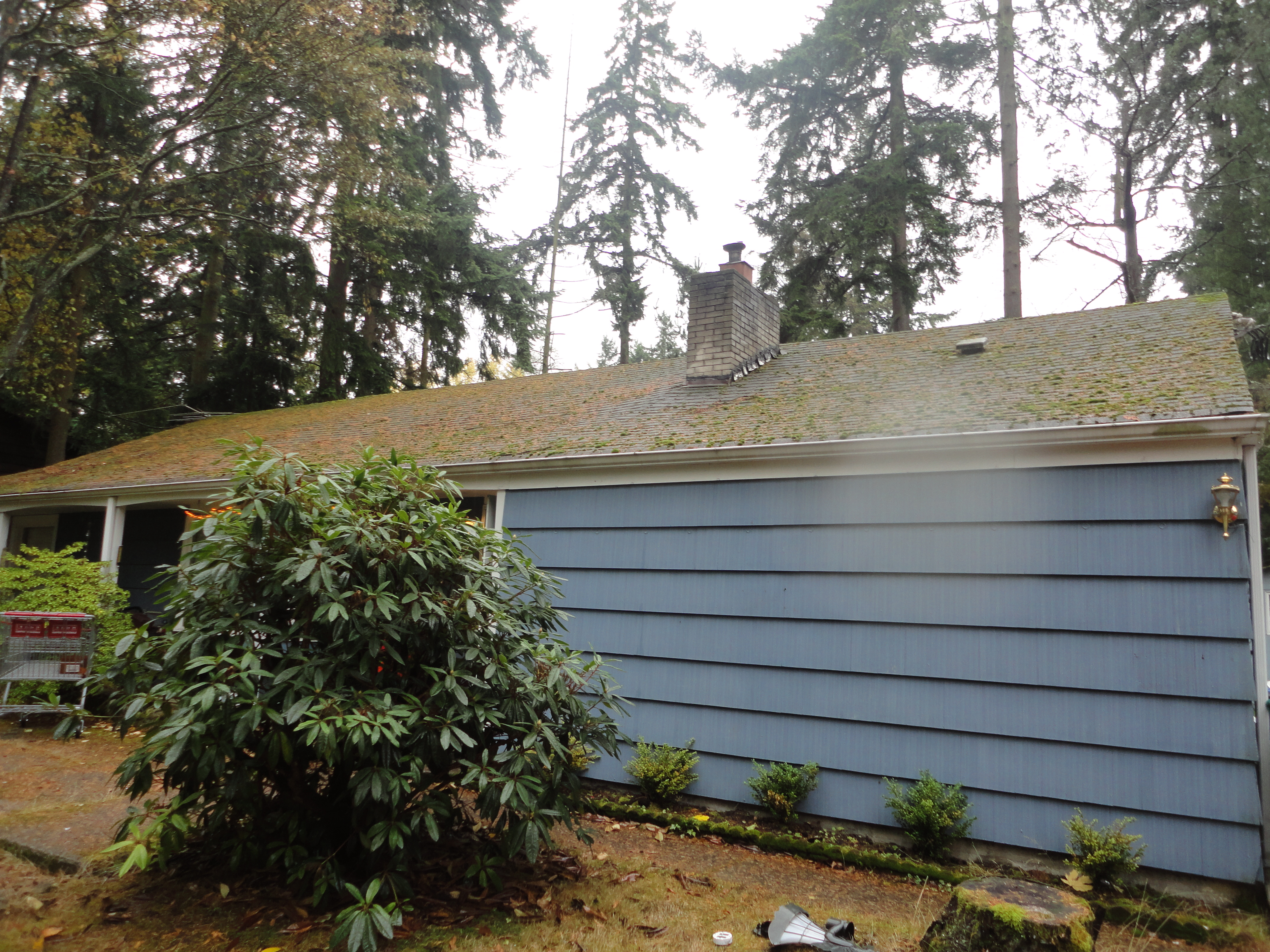 BEFORE ROOF CLEANING SEATTLE