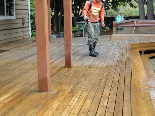 Bellevue cedar roof clean seattle roof cleaning for Revive deck cleaner