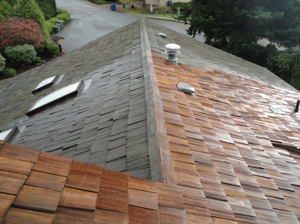 Before and After Cleaning-Bellevue, WA